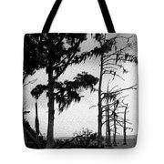 Mossy Beach Trees Tote Bag