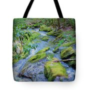 Mossy Blue Brook Tote Bag