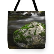 Mossy Boulder In Mountain Stream Tote Bag