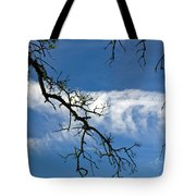 Mossy Branches Skyscape Tote Bag