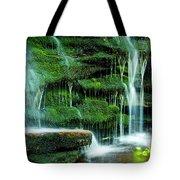 Mossy Falls - 2981 Tote Bag