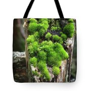 Mossy Fence - 365-321 Tote Bag