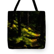 Mossy Forest Path Tote Bag
