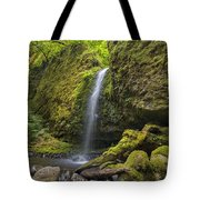 Mossy Grotto Falls In Summer Tote Bag