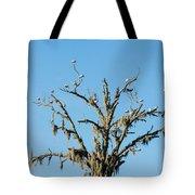 Mossy Landing Tote Bag