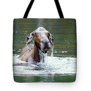 Mossy Moose Tote Bag