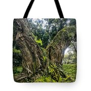 Mossy Old Tree Tote Bag