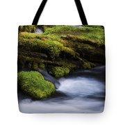 Mossy Rocks Oregon 3 Tote Bag