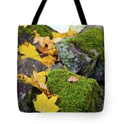 Mossy Stones And Maple Leaves Tote Bag