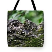 Mossy Tree Knot Tote Bag