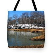 Moswetuset Hummock In Winter Tote Bag