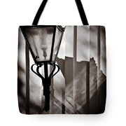 Moth And Lamp Tote Bag