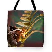 Moth At Sunrise Tote Bag