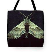 Moth At Texaco Station Tote Bag
