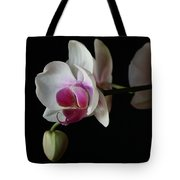 Moth Orchid 1 Tote Bag