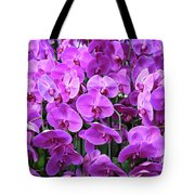 Moth Orchid Exuberance Tote Bag
