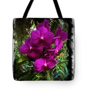 Moth Orchids  Tote Bag