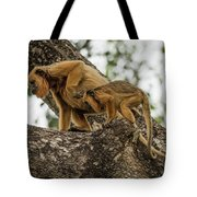 Mother And Baby Black Howler Monkeys Climbing Tote Bag