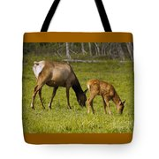 Mother Elk And Fawn Tote Bag