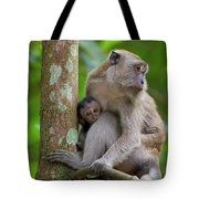 Mother And Baby Monkey Tote Bag