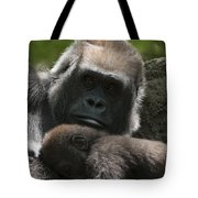 Mother And Child Gorillas1 Tote Bag