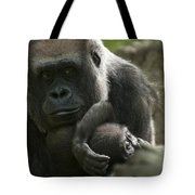 Mother And Child Gorillas4 Tote Bag