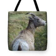 Mother Bighorn Tote Bag