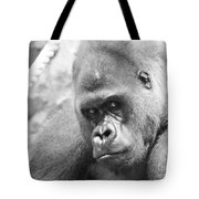 Mother Gorilla In Thought Tote Bag