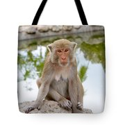 Mother Monkey Tote Bag