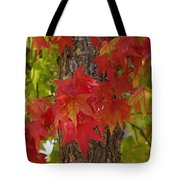 Mother Nature's Style Tote Bag