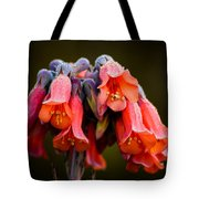 Mother Of Thousands Tote Bag