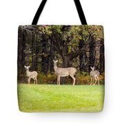 Mother Of Two Tote Bag
