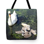 Mother Swan And Baby Cygnets Tote Bag