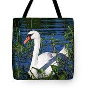 Mother Swan Tote Bag
