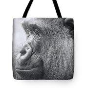 Motherhood Contemplation Tote Bag