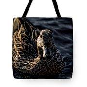 Mottled Duck In Big Spring Park Tote Bag