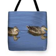 Mottled Ducks, South Padre Island, Texas Tote Bag