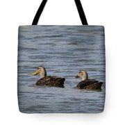 Mottled Ducks Tote Bag