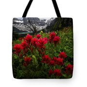 Mount Assiniboine Canada 11 Tote Bag