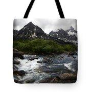 Mount Assiniboine Canada 15 Tote Bag