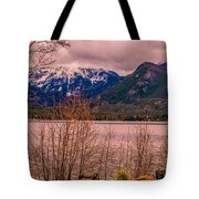 Mount Baldy From Point Park Tote Bag by Tom Potter