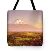 Mount Etna Tote Bag