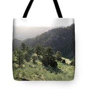 Mount Galbraith In Spring Tote Bag