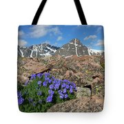 Mount Holy Cross With Wildflowers 2 Tote Bag