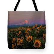 Mount Hood And Balsam Root Blooming In Spring Tote Bag