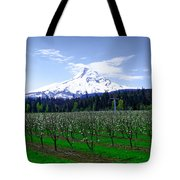 Mount Hood Behind Orchard Blossoms Tote Bag