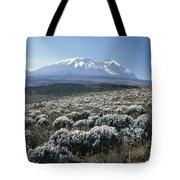 Mount Kilimanjaro, The Breach Wall Tote Bag