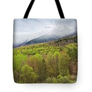 Mount Mansfield Spring Snow Tote Bag