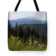 Mount St Helens In Washington State Tote Bag