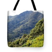 Mount Tamalpais From Blithedale Ridge Tote Bag